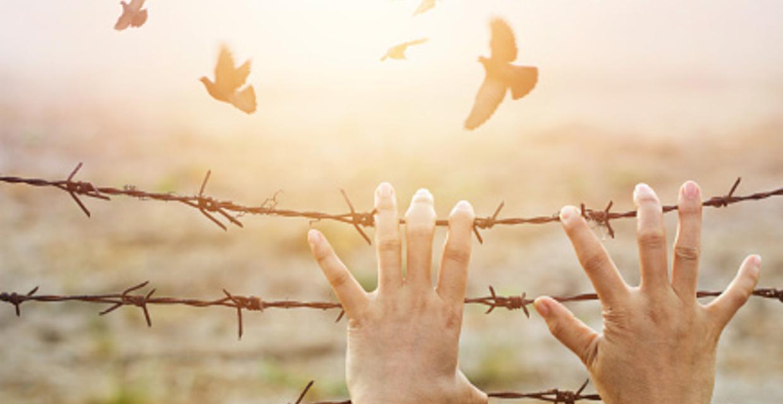 23 Signs of Human Trafficking
