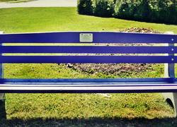 Purple Benches Honor Domestic Violence Victims
