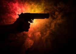 States Fighting to Keep Guns Away from Abusers