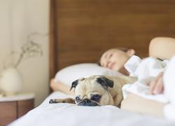 After Trauma, Sleep May Be What You Need Most