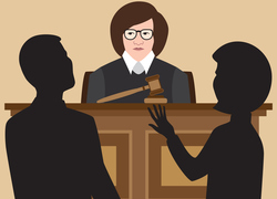New Book for Attorneys, Judges on Protecting Survivors